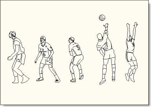 בלוקים באוטוקאד לשחקני כדורעף